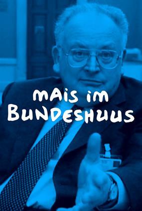 Mais Im Bundeshuus - Le Génie Helvétique