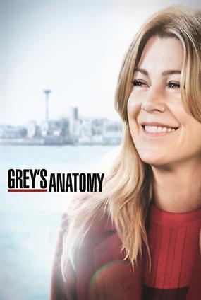 greys anatomy staffel 13 deutsch amazon